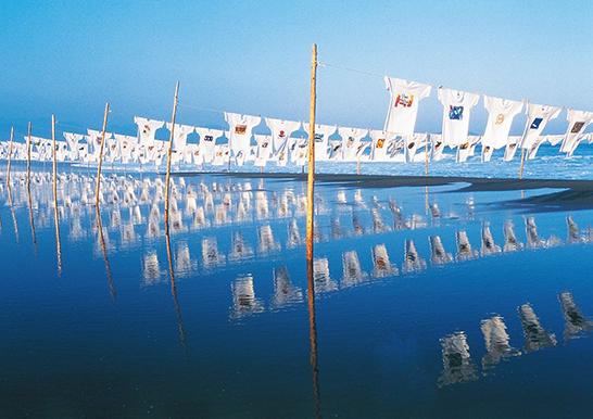 2019年10月5日(土)~6日(日)に愛媛県今治市唐子浜で開催予定の「#100年後の地球を考える Tシャツアート展 ㏌今治」にキレイモのTシャツが展示されます。